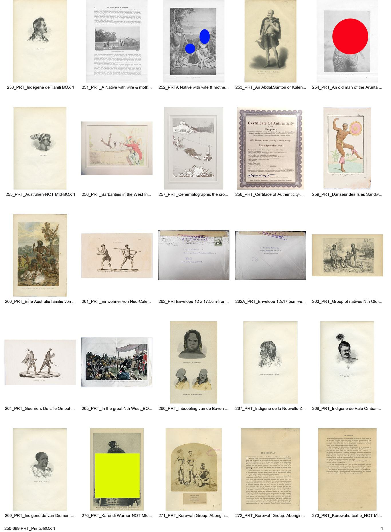 what is a visual essay